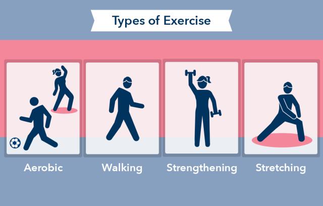 quels-sont-les-types-dexercices-de-renforcement-musculaire