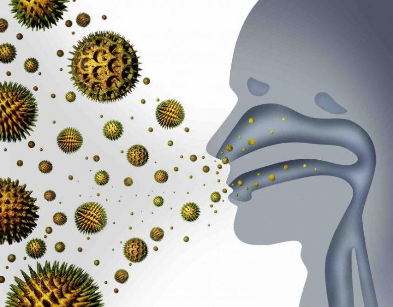 Les traitements naturels contre les allergies aux pollens 1