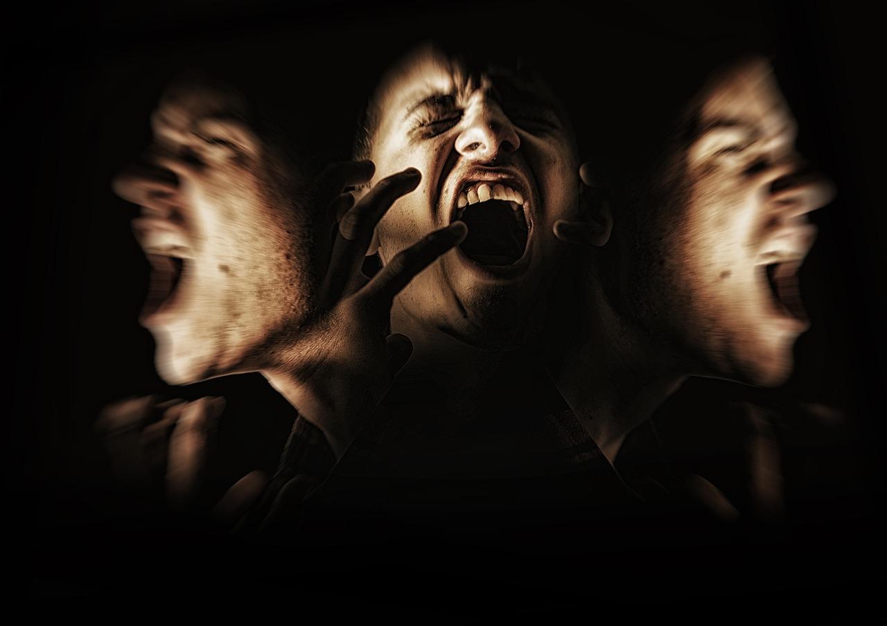 Qu'est ce que la Schizophrénie paranoïde  ? 1
