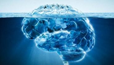 inconscient-iceberg-650x371