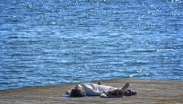 Pleine conscience Relaxation