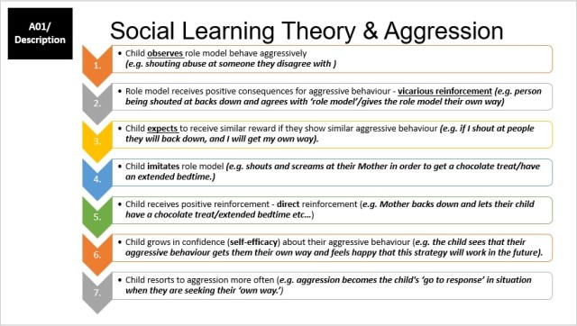 Social Learning Theory Flow Chart Application to Aggression