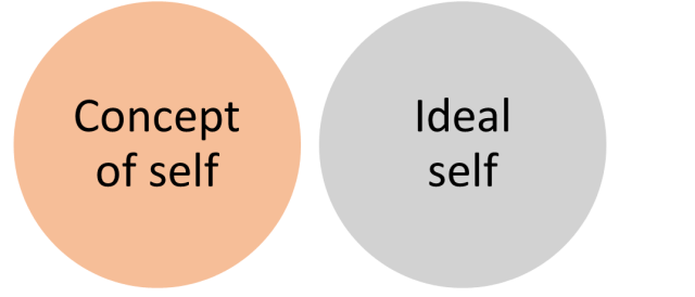 Diagram displaying Incongruence, self-actualisation not possible.