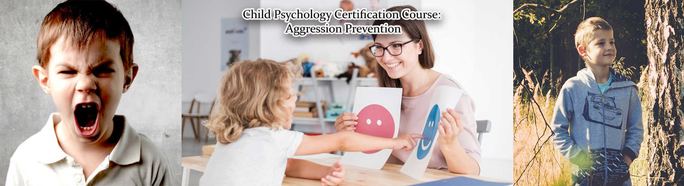 Aggression Prevention Child Psychology Psychology Online Courses
