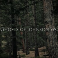 The Ghosts of Johnson Woods (2015)