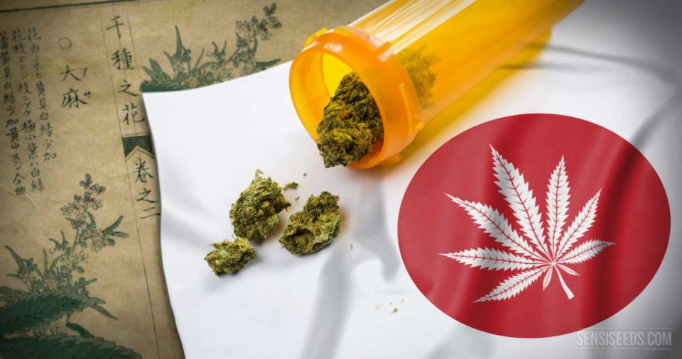 hemp and medical cannabis in Japan-sensi-seeds