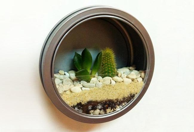 jardins em miniatura