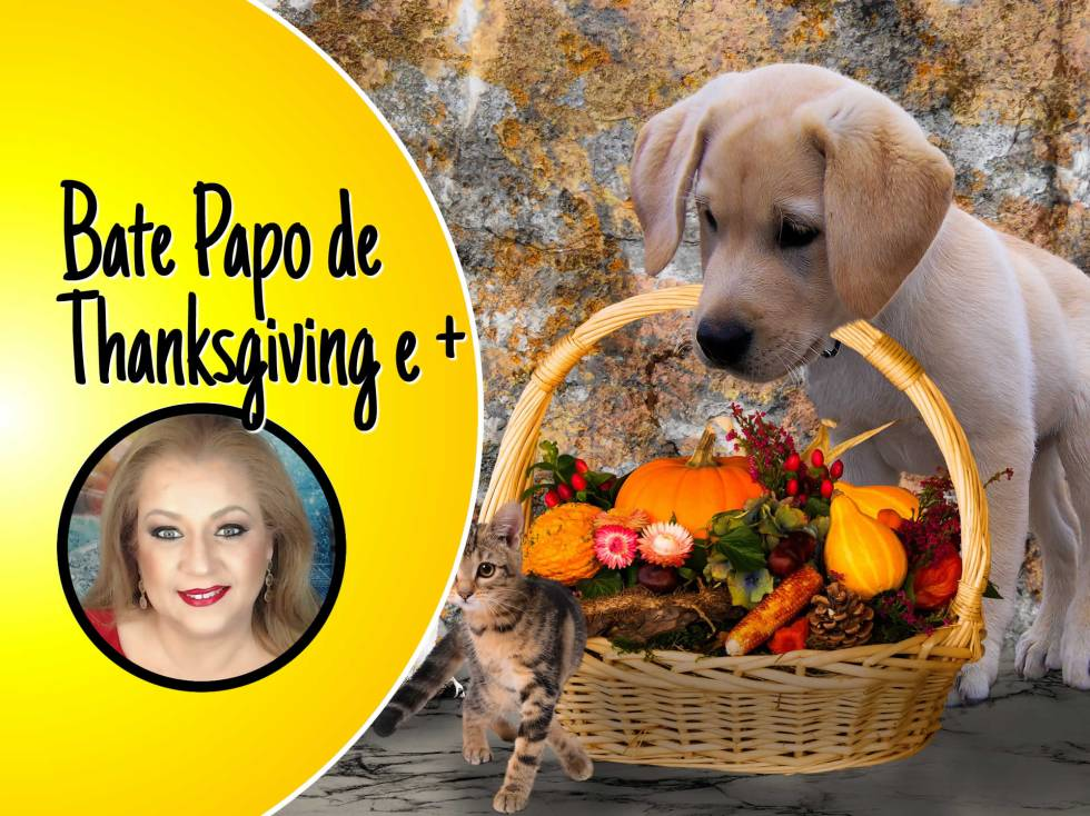 Feliz Thanksgiving 2019, Especial de Black Friday e Bate-Papo