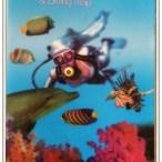 Guia da vida marinha no Mar Vermelho - Inglês