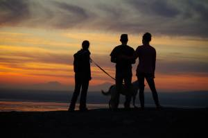 Denali Sunset