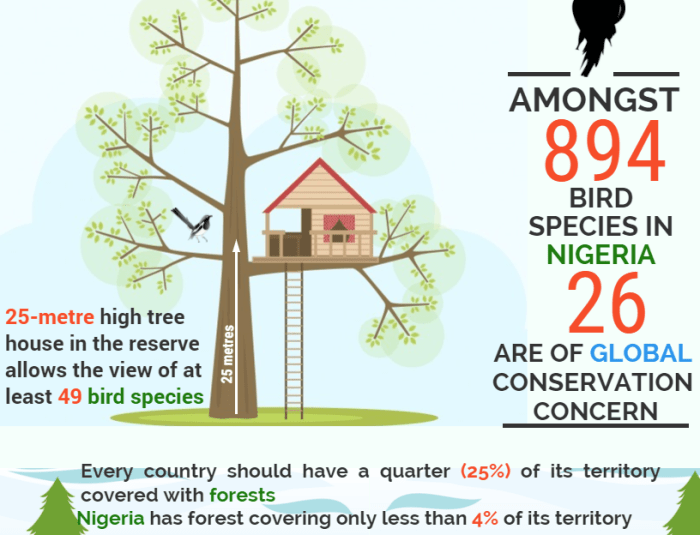 Can Public-Private Partnerships Preserve The Dwindling  Biodiversity of Lagos?