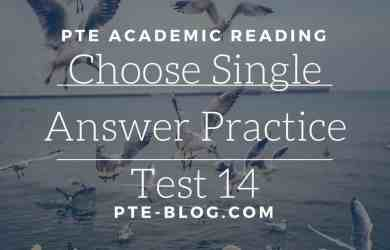 PTE Academic Reading: MCQ - Choose Single Answer Practice Test 14
