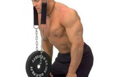 Head & Neck Weight Trainer Fitness Head & Neck Weight Trainer