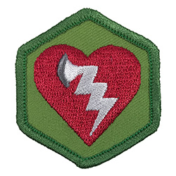 AED Merit Badge