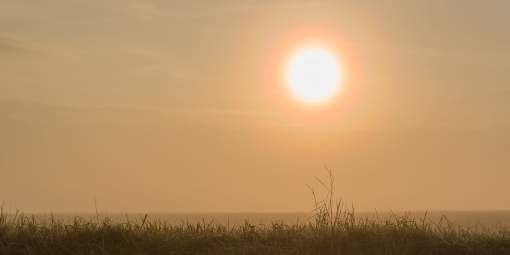 Le soleil a rendez-vous avec la brume