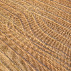Graphisme agraire