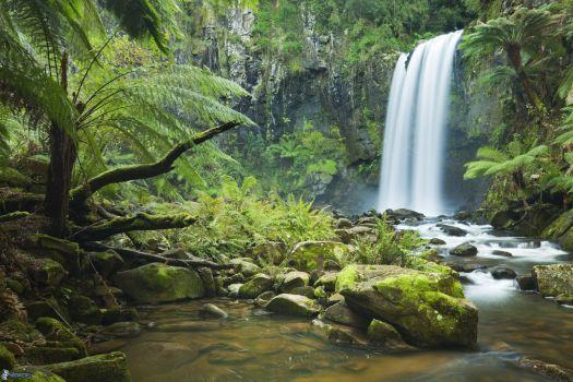 Entrañas de la Selva Lacandona