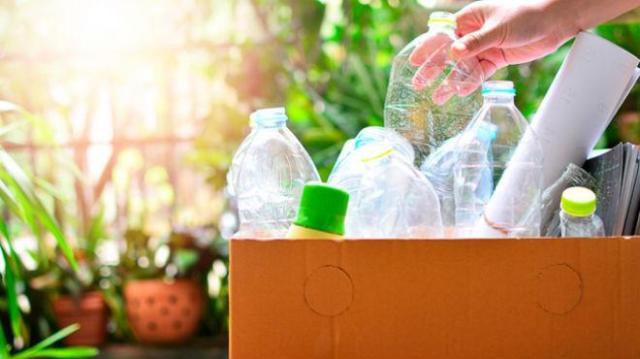 botellas listas para reciclaje en caja