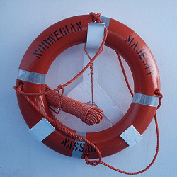 Life Preserver - Business Succession Plan