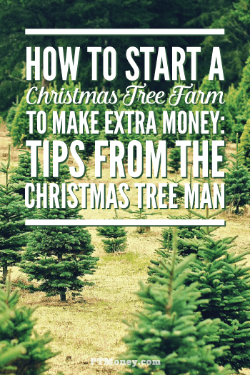 Find Out If A Christmas Tree Farm