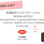 【ST – ポイント和訳】総説 – 失語症の言語ネットワークの神経可塑性。進