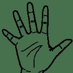 【手 – 白黒線画】右手(手掌面)- リハイラスト