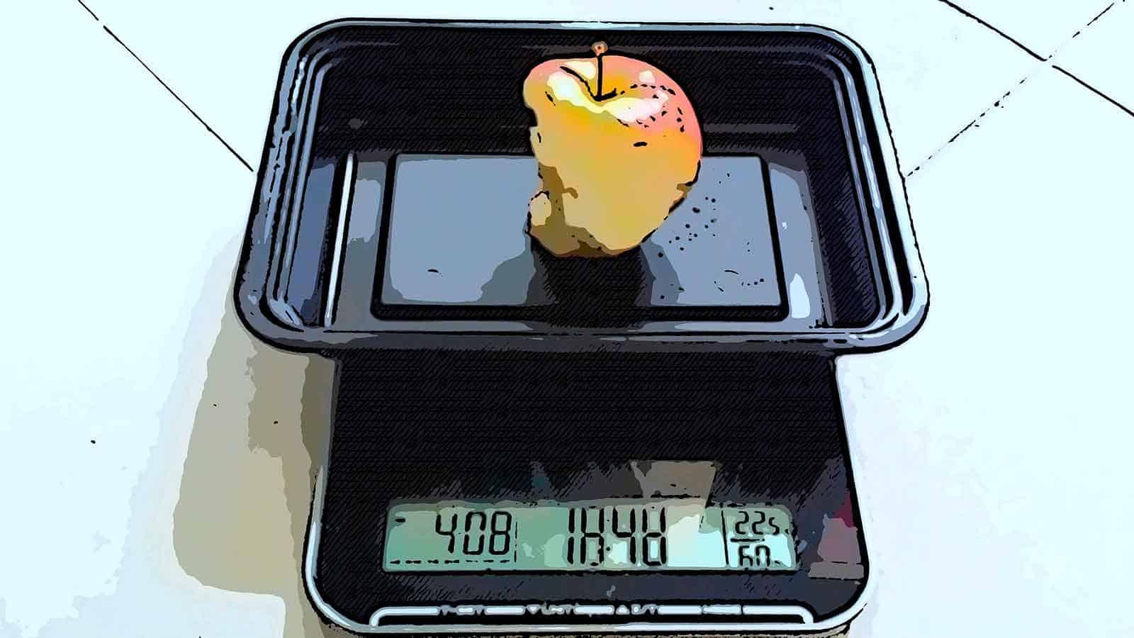 Food scale health coach