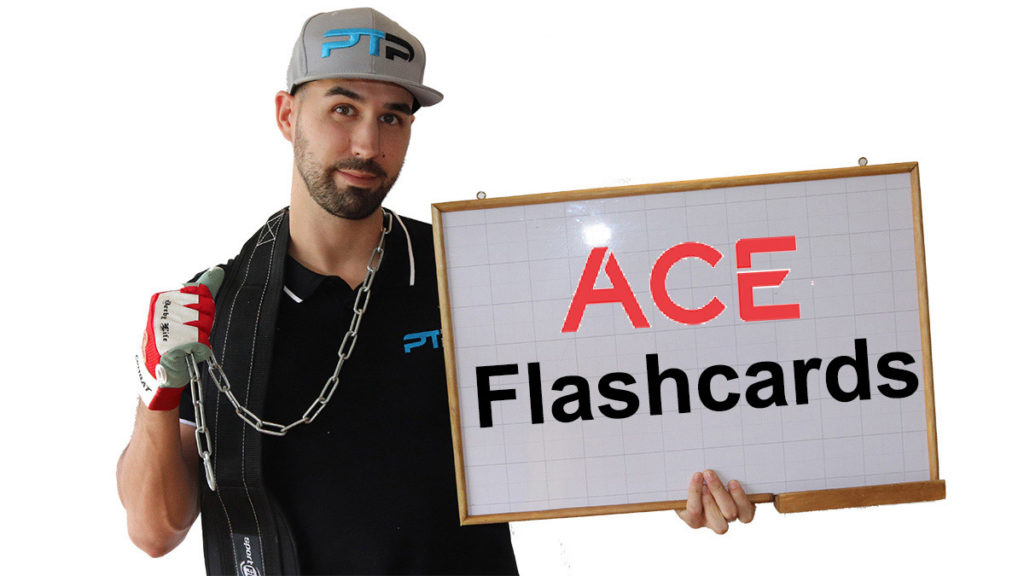 ACE CPT Flashcards
