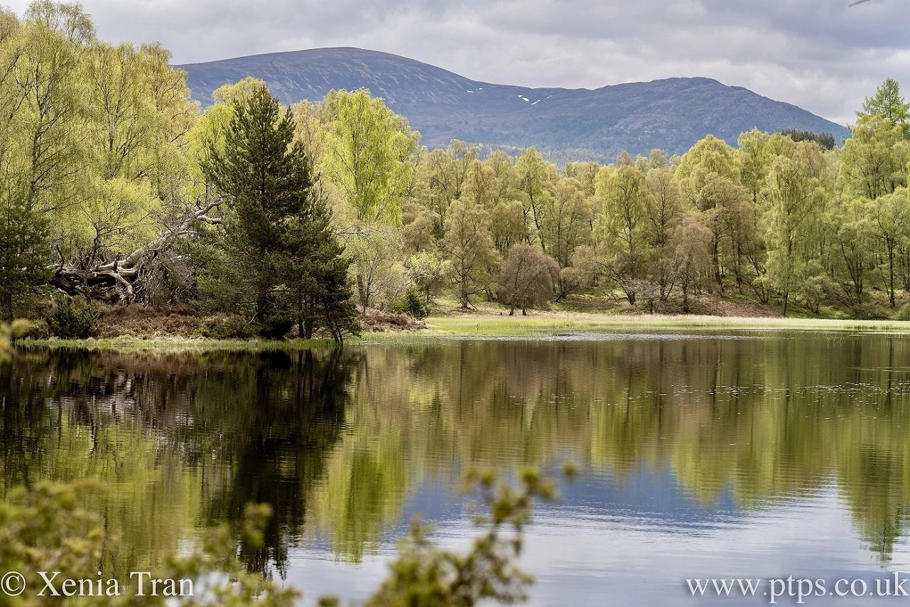 Lochan Mor in Spring with reflections in the water