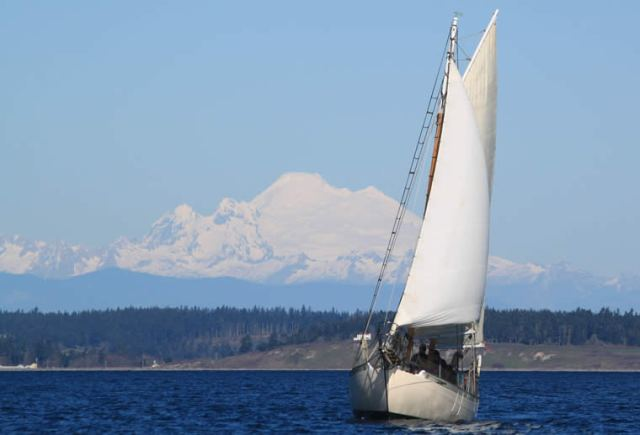 Mt. Baker watching the fun on Port Townsend Bay as the 2015 Shipwrights' Regatta took place under sunny skies and a good breeze. Photo by Helen Leenhouts.