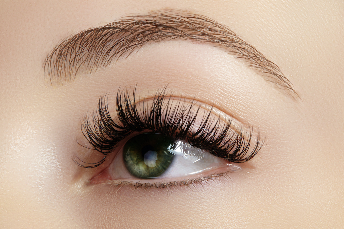 pic Perfect Eyebrow Shape Pictures threading waxing facials
