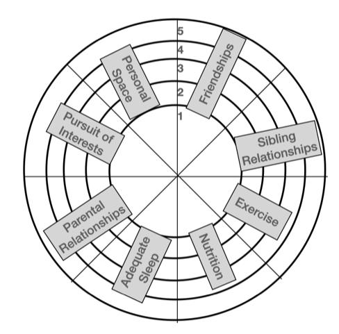 Wheel of life ADHD