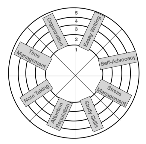 Student Wheel of Life-PTS COACHING