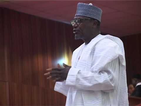 INEC cancels rerun election in Niger, declares PDP candidate winner