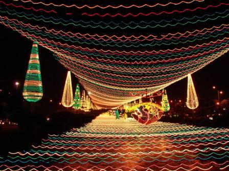 Medellin Light Festival
