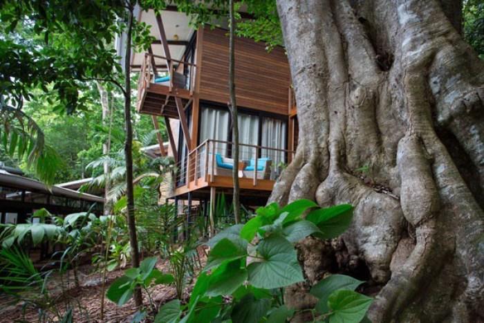 Photo via amble.com/IslaPalenque