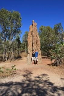 Kathedrale Termiten