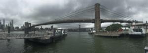 adler bridge