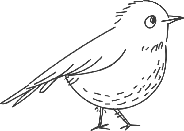 Free Online Birds Sparrows Animal Creature Vector For