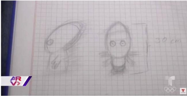 大量目击!UFO被爆降落地面 超迷你外星人走上街