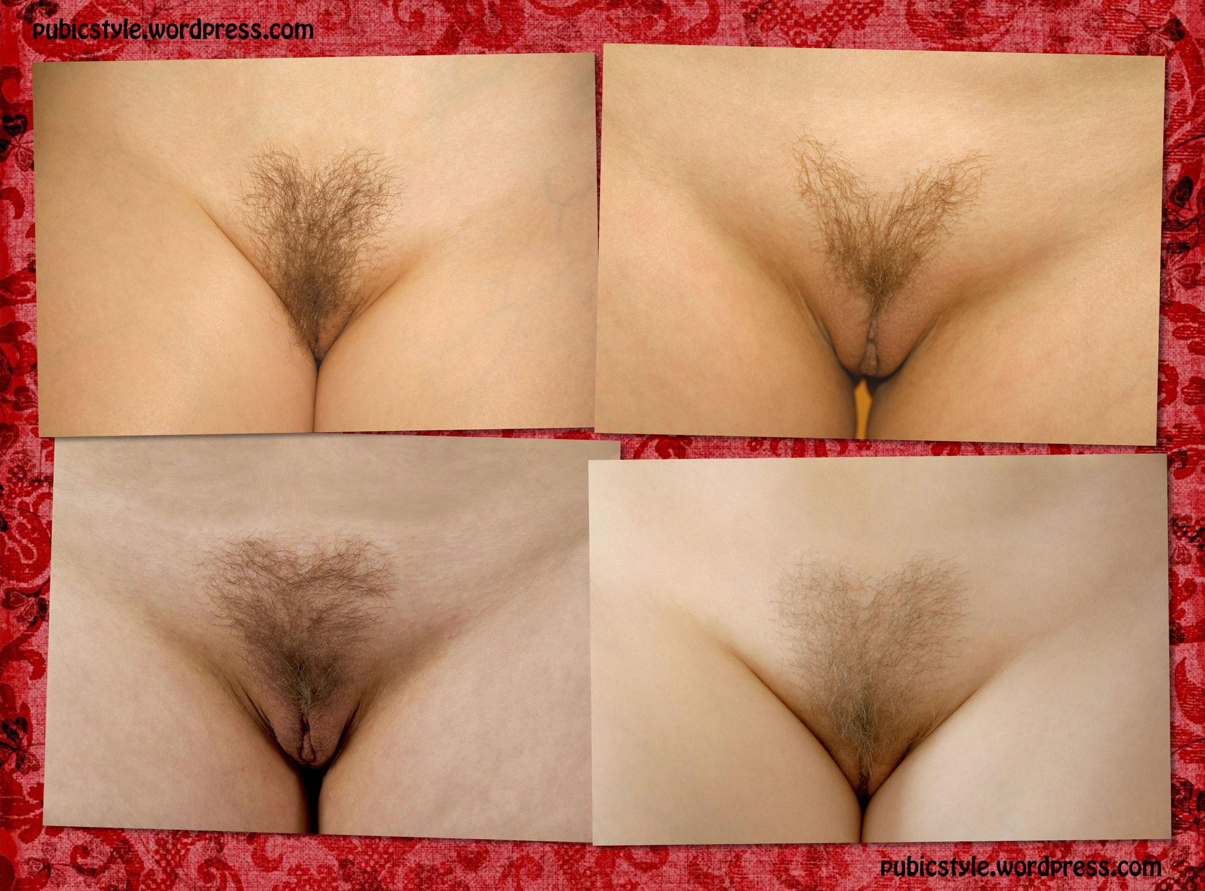 Pubic hair styles  pubicstyle