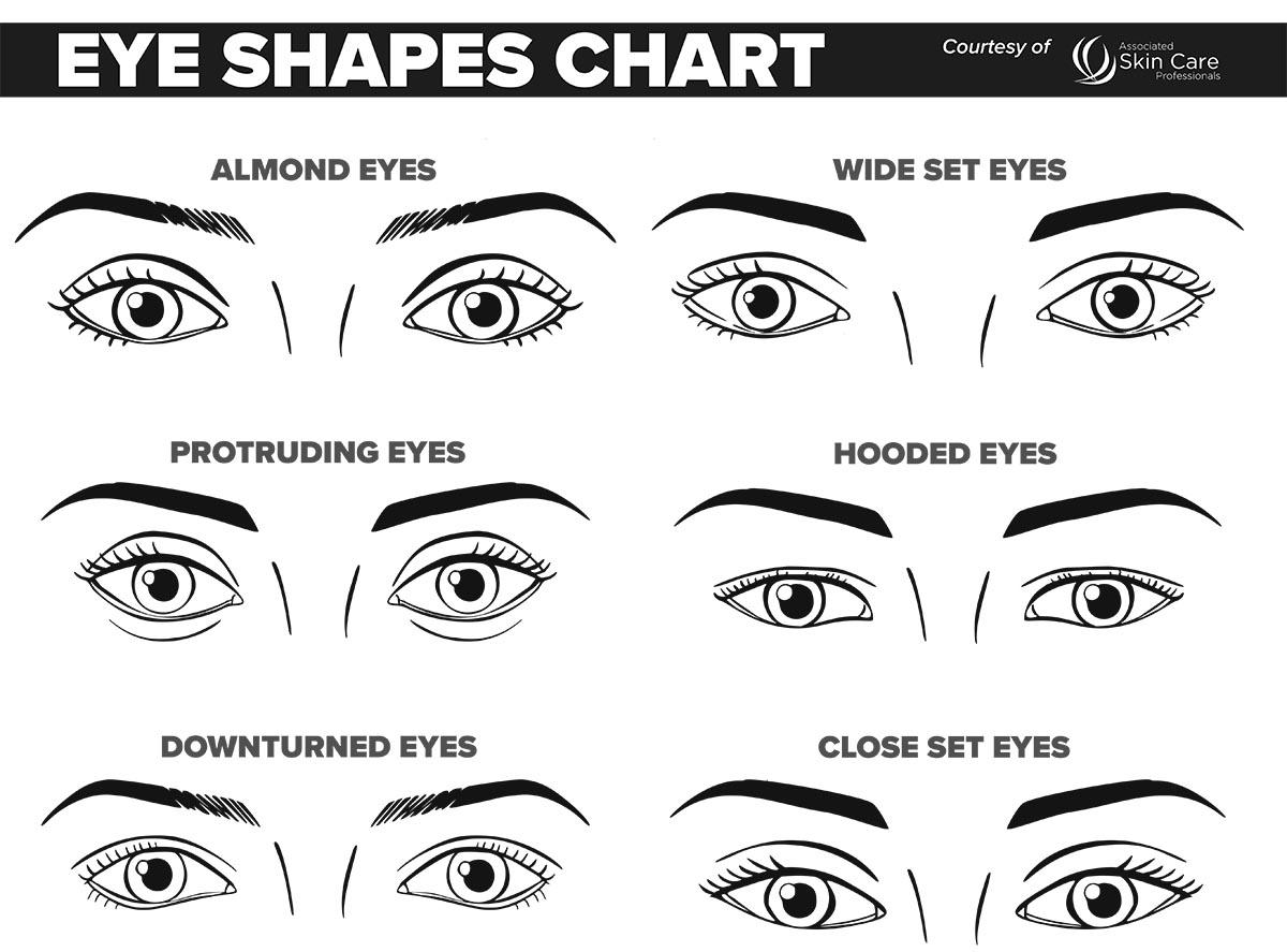 New Makeup Face Charts