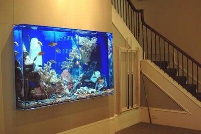 Quelques aquariums insolite et bizarre #4 (photos) Soyez le ...