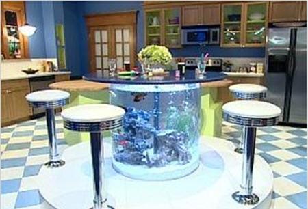 Quelques aquariums insolite et bizarre 2 photos soyez for Aquarium insolite