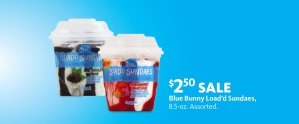 Express - Dairy Month Ice Cream $2.50