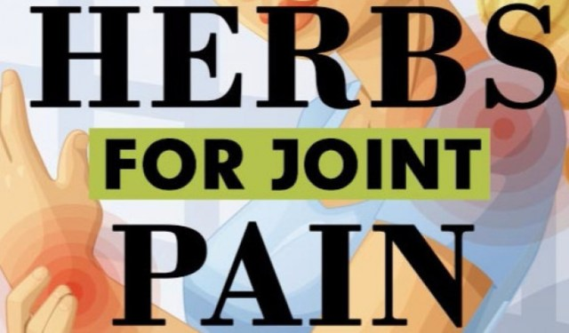Top 10 Herbs For Joint Pain