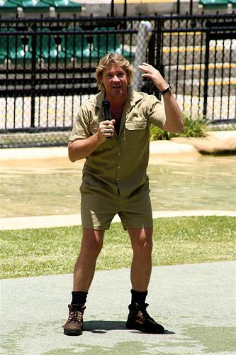 Steve Irvin - vanatorul de crocodili ucis de o pisica de mare