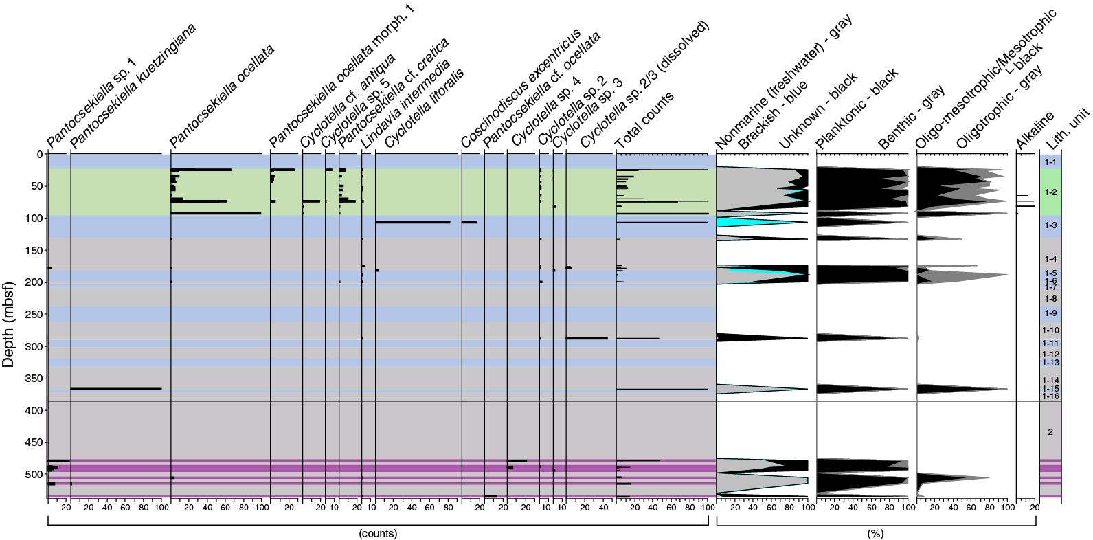 hight resolution of the preliminary diatom stratigraphy of the targeted sections is presented in figure f13 and the data are annotated