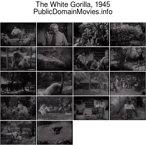 The White Gorilla, 1945