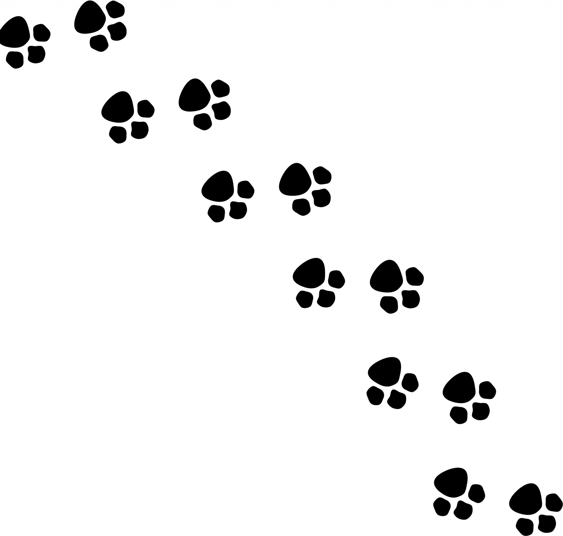 Animal Footsteps Silhouette Free Stock Photo